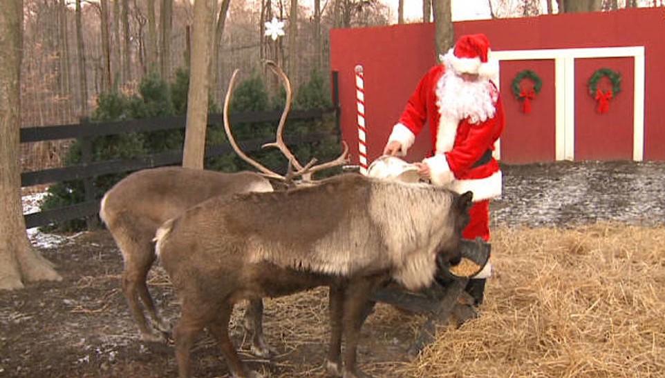 Kalėdų Senelio belaukiant: 3 programėlės vaikams